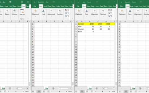 Various Windows in Excel example